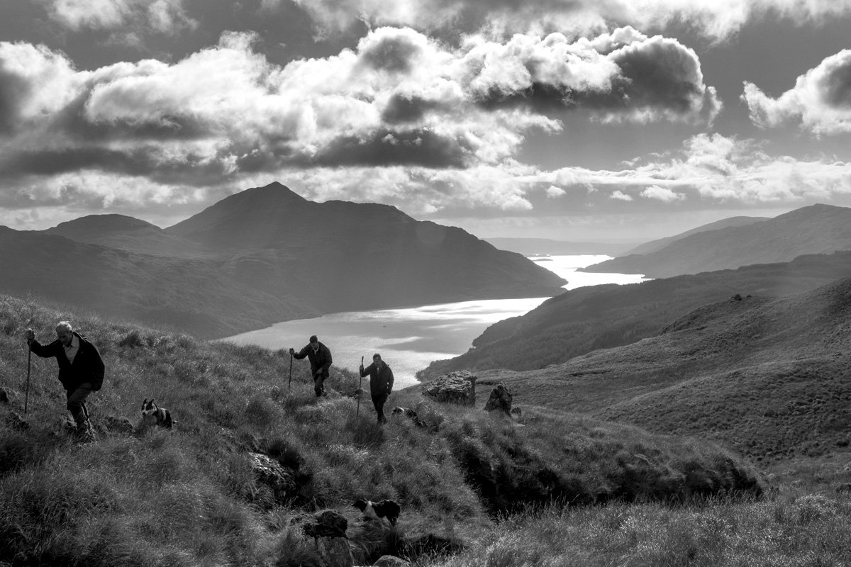 Heading out from Inveruglas to gather sheep on foot on the near end of Ben Vorlich, looking south down Loch Lomond towards Ben Lomond