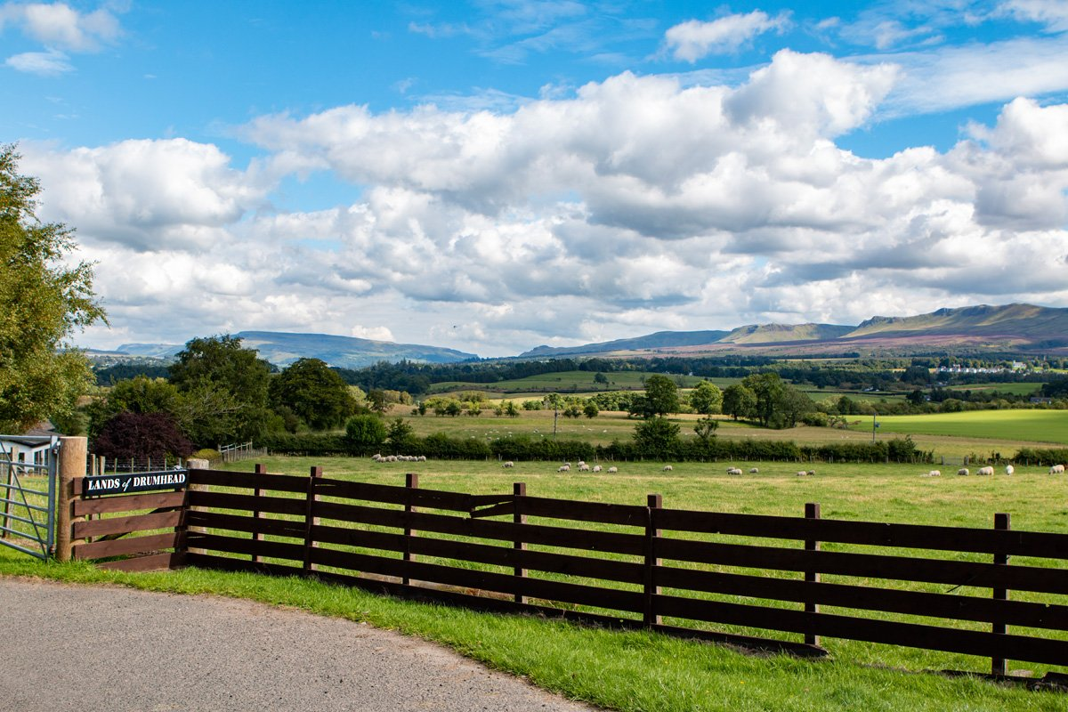 View from Lands of Drumhead where you can collect Duncan Family Farms' locally produced meats