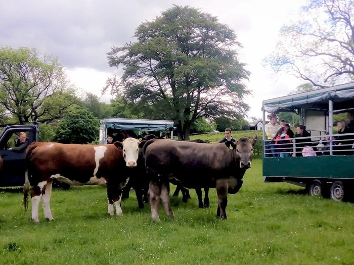 Tractor & Trailer Farm Tours at Duncan Family Farms on LEAF's Open Farm Sunday.
